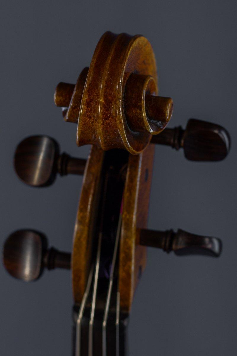 Viola – Pascal Gilis – 2019 – Brussels thumbnail